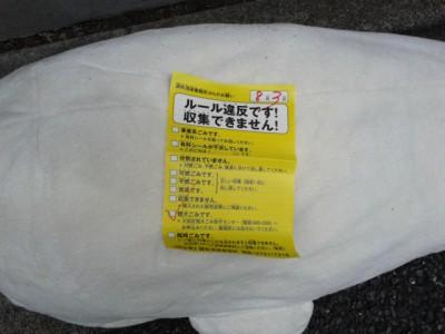 アザラシ枕2